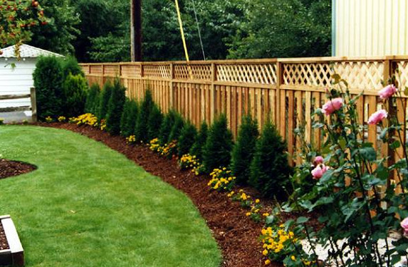 landscaping around the fence - Garden Ideas Along Fence Line
